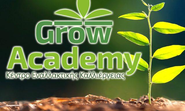 GROW ACADEMY (Γρυπάρης Γεώργιος Σ.)