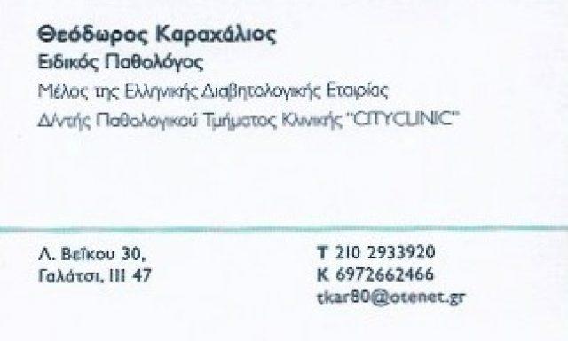 ΚΑΡΑΧΑΛΙΟΣ ΘΕΟΔΩΡΟΣ