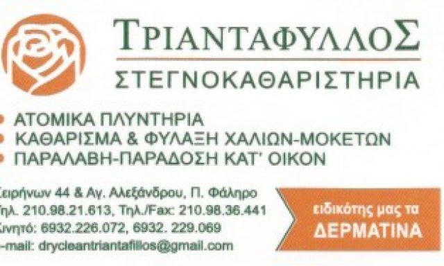 ΤΡΙΑΝΤΑΦΥΛΛΟΣ-ΞΕΝΟΣ ΠΑΝΑΓΙΩΤΗΣ