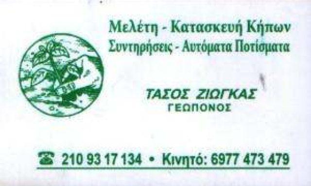 ΖΙΩΓΚΑΣ ΑΝΑΣΤΑΣΙΟΣ