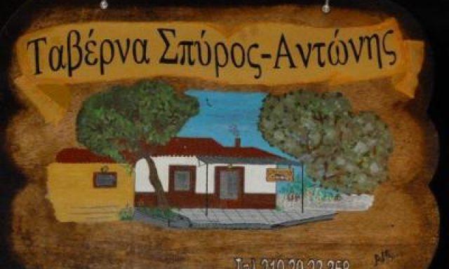 ΣΠΥΡΟΣ ΑΝΤΩΝΗΣ-ΑΛΕΞΙΟΥ Φ ΓΚΟΤΖΙΑ Π ΟΕ
