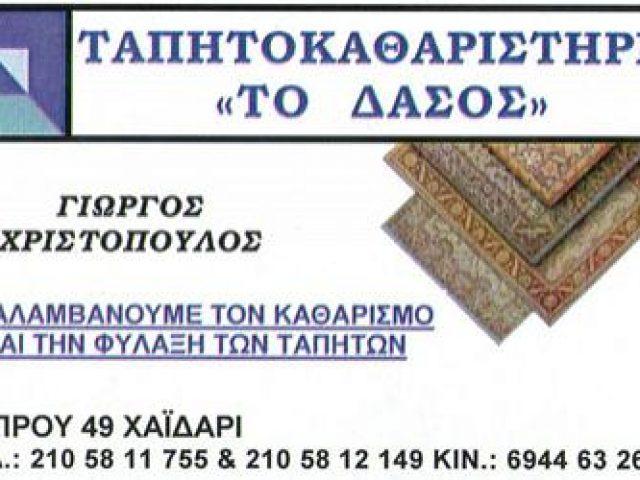 ΤΟ ΔΑΣΟΣ (ΧΡΙΣΤΟΠΟΥΛΟΣ ΓΕΩΡΓΙΟΣ)